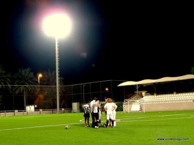ey football (10)