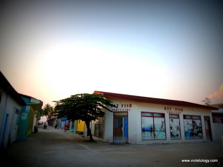 Another souvenir shop