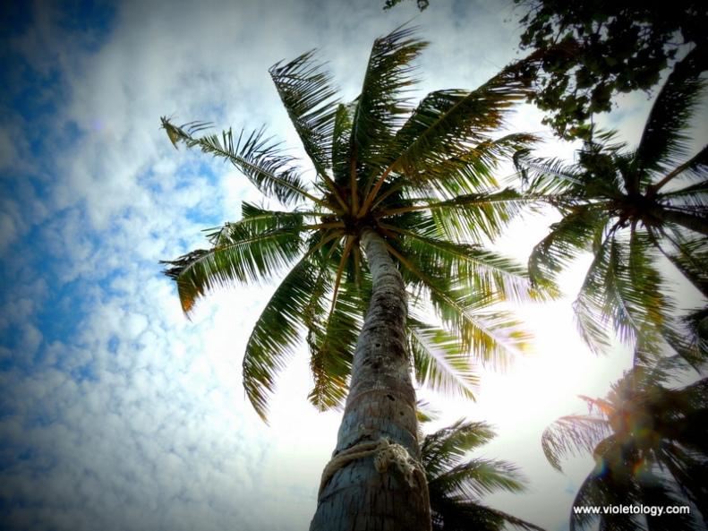 maldivesday2 (11)