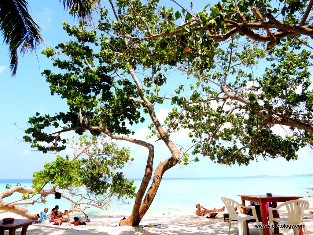 maldivesday5 (8)