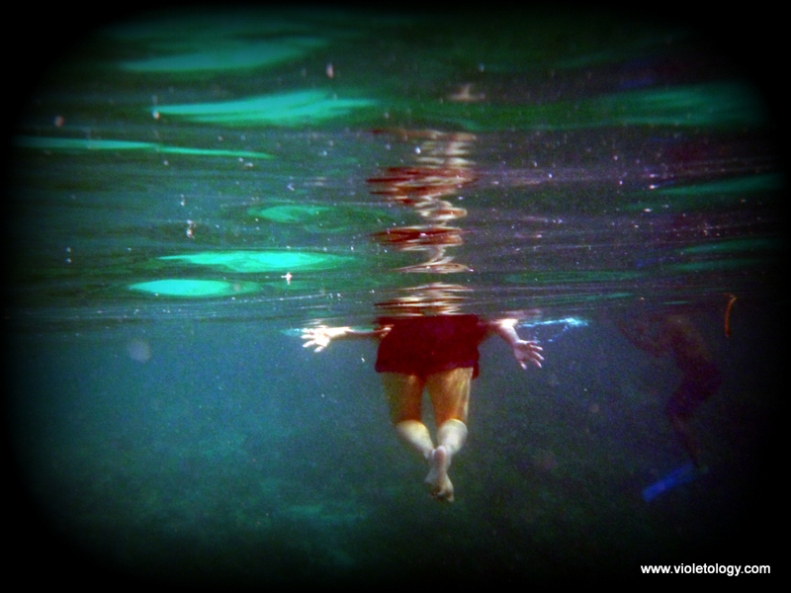 Snorkelmaldives (13)