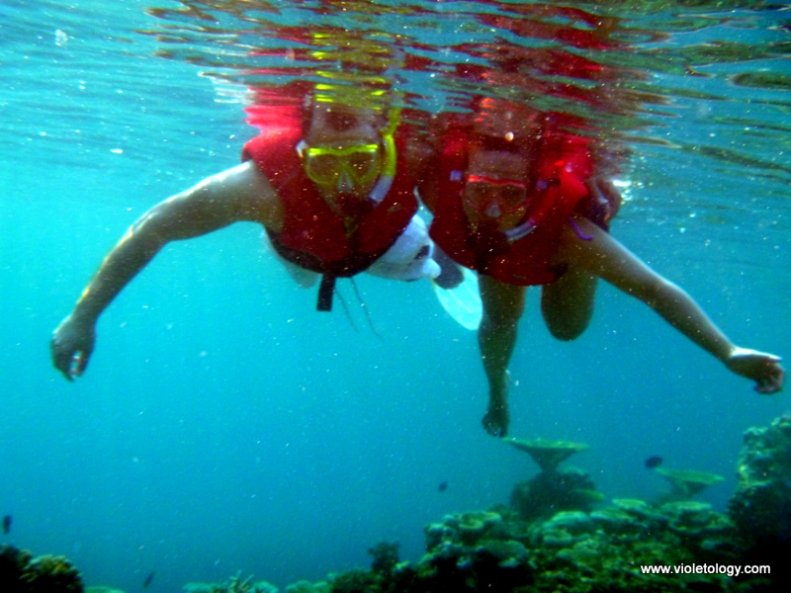 Snorkelmaldives (16)