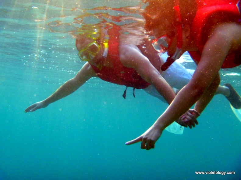 Snorkelmaldives (17)