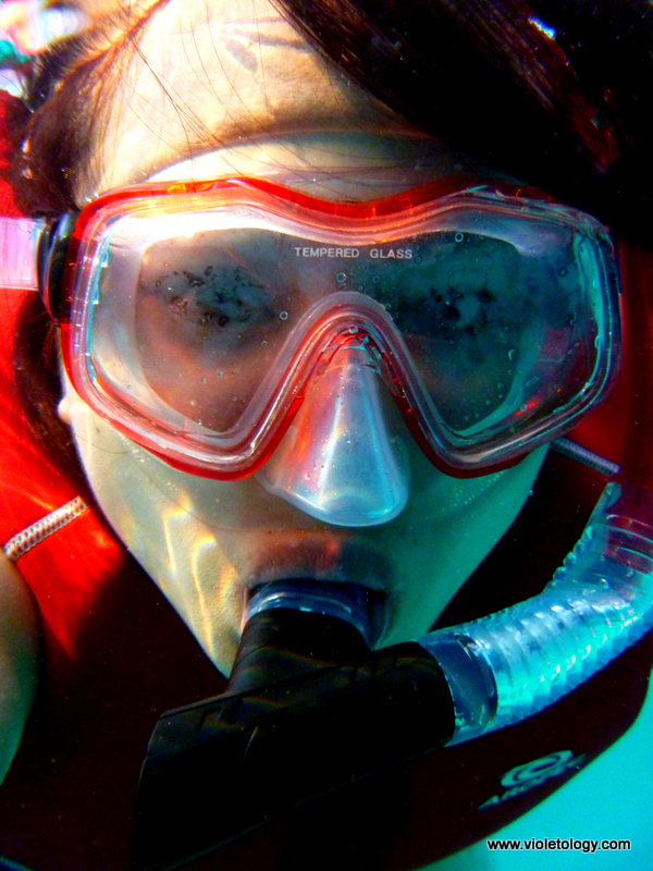 Snorkelmaldives (19)