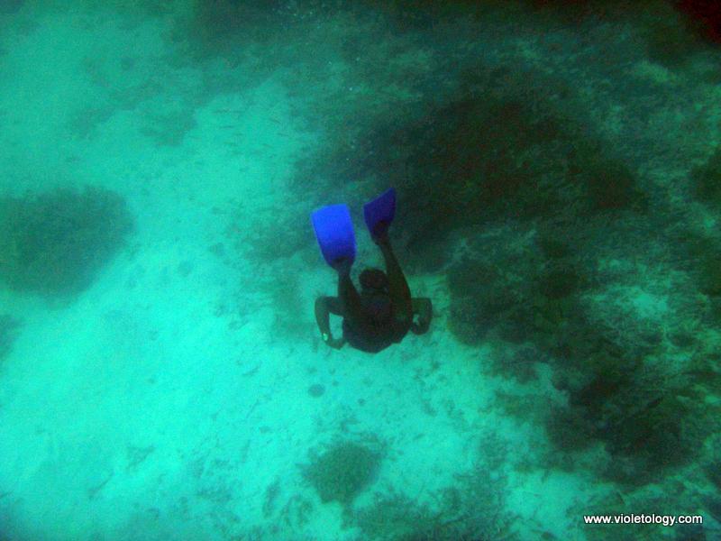 Snorkelmaldives (20)