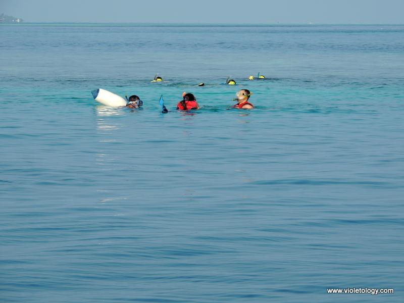 Snorkelmaldives (5)