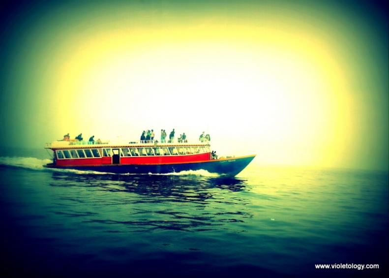 toFerryboat (1)