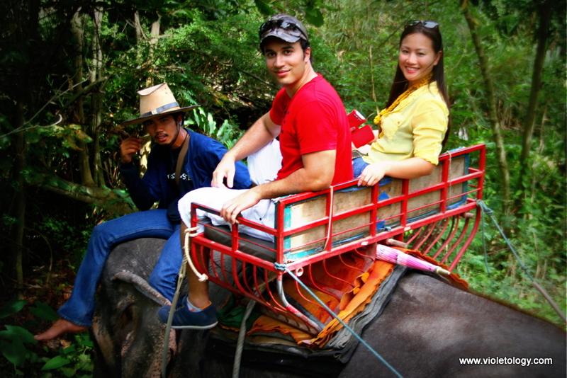 bangkok elephant (9)