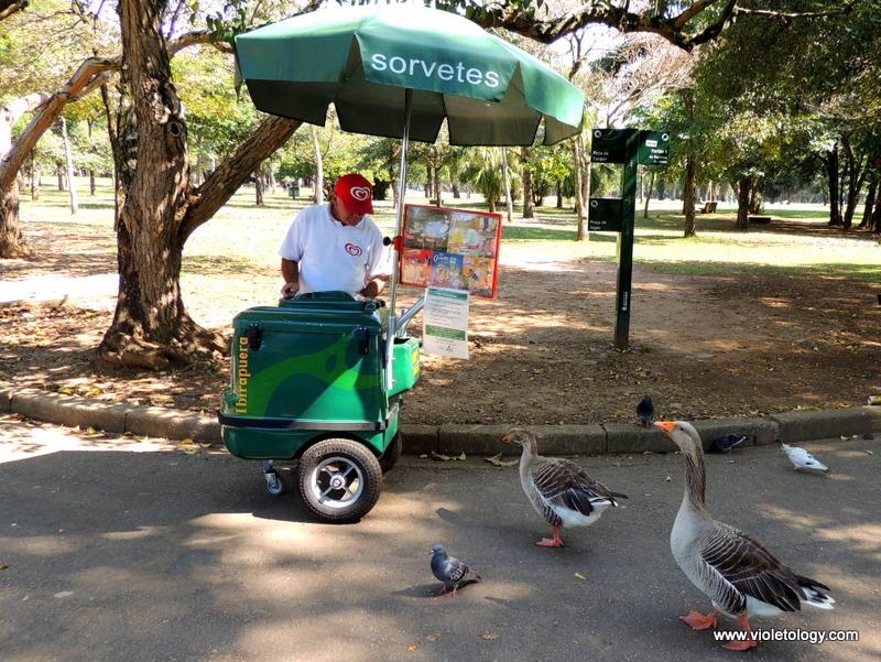 Ibirapuera Park (14)