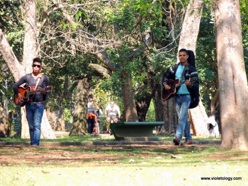 Ibirapuera Park (15)