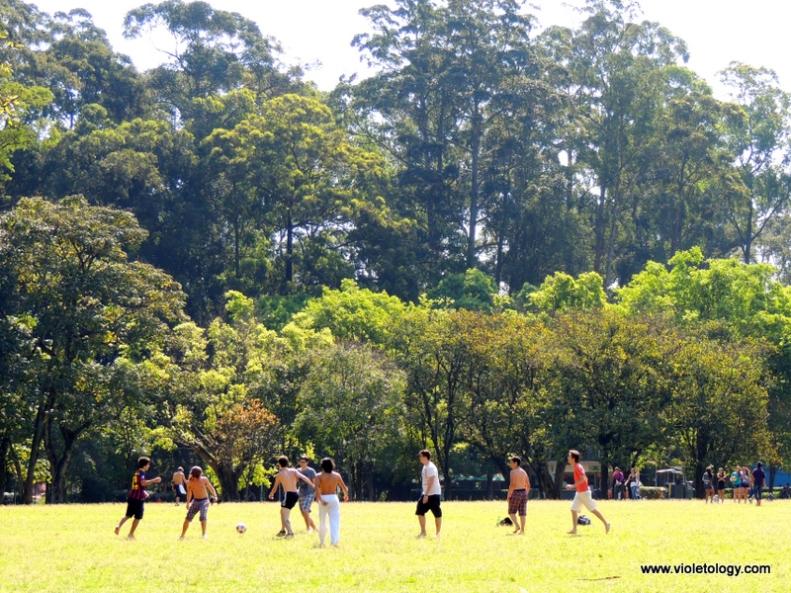 Ibirapuera Park (16)