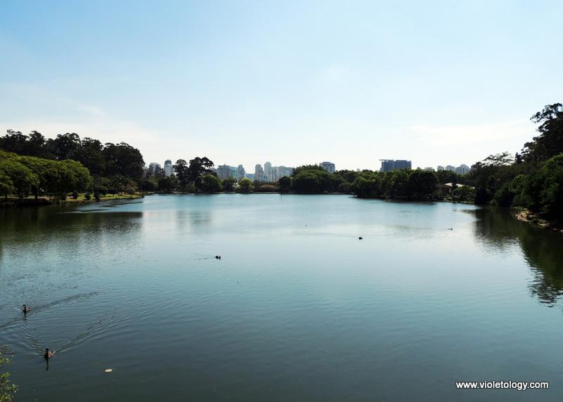 Ibirapuera Park (19)