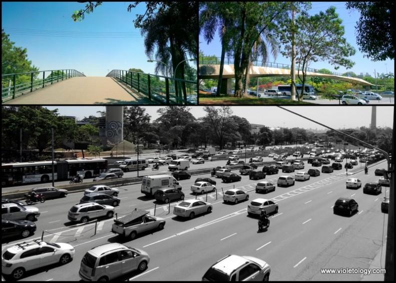 Ibirapuera Park (4)