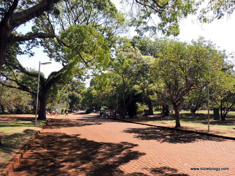 Ibirapuera Park (5)