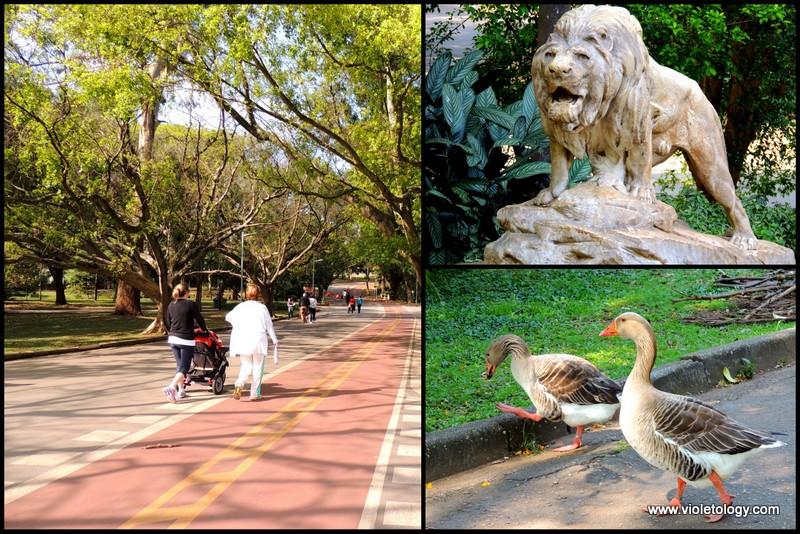 Ibirapuera Park (6)