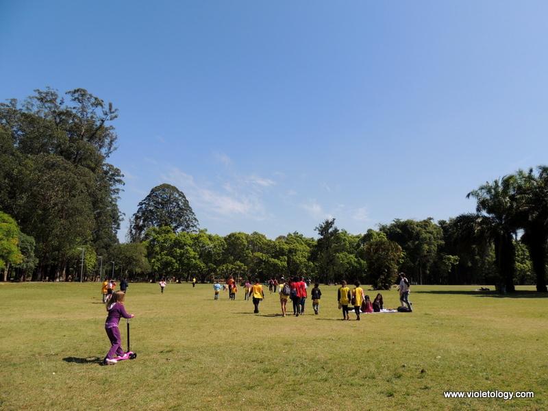 Ibirapuera Park (7)
