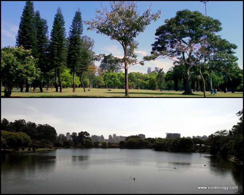 Ibirapuera Park (9)