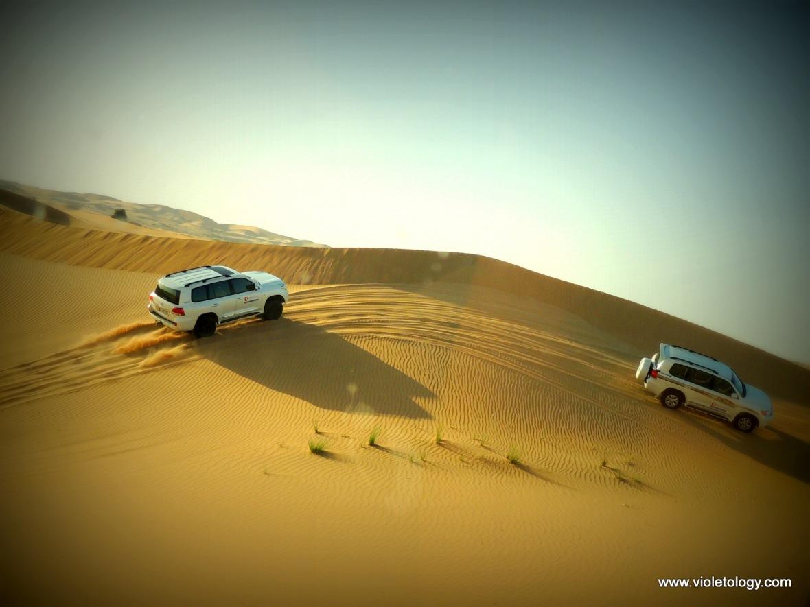 AUH Desert (10)
