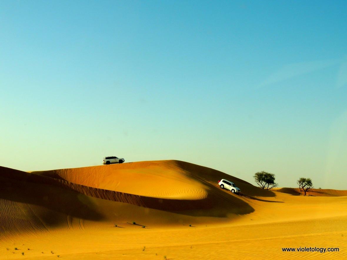 AUH Desert (12)