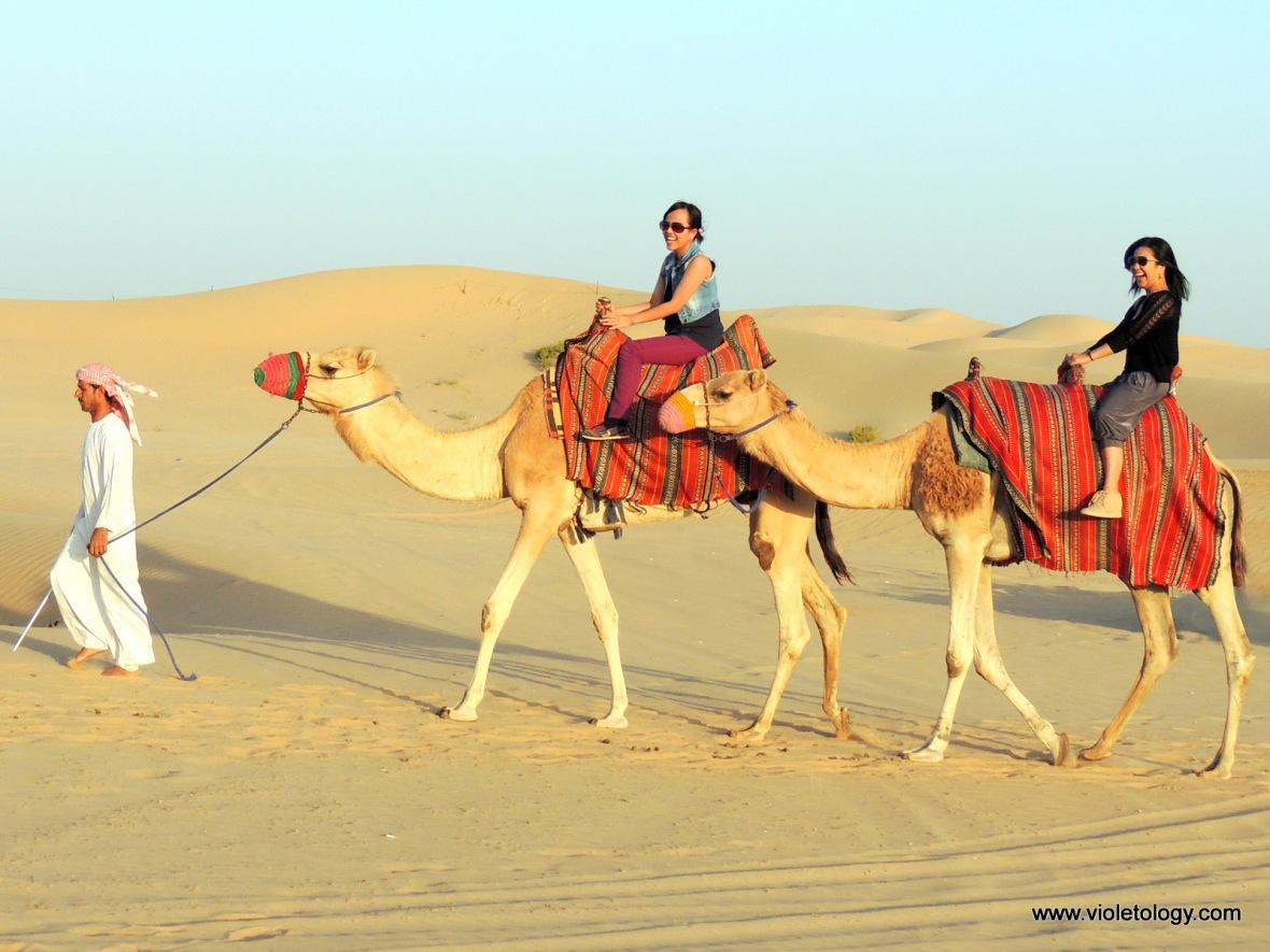 Desert safari (15)
