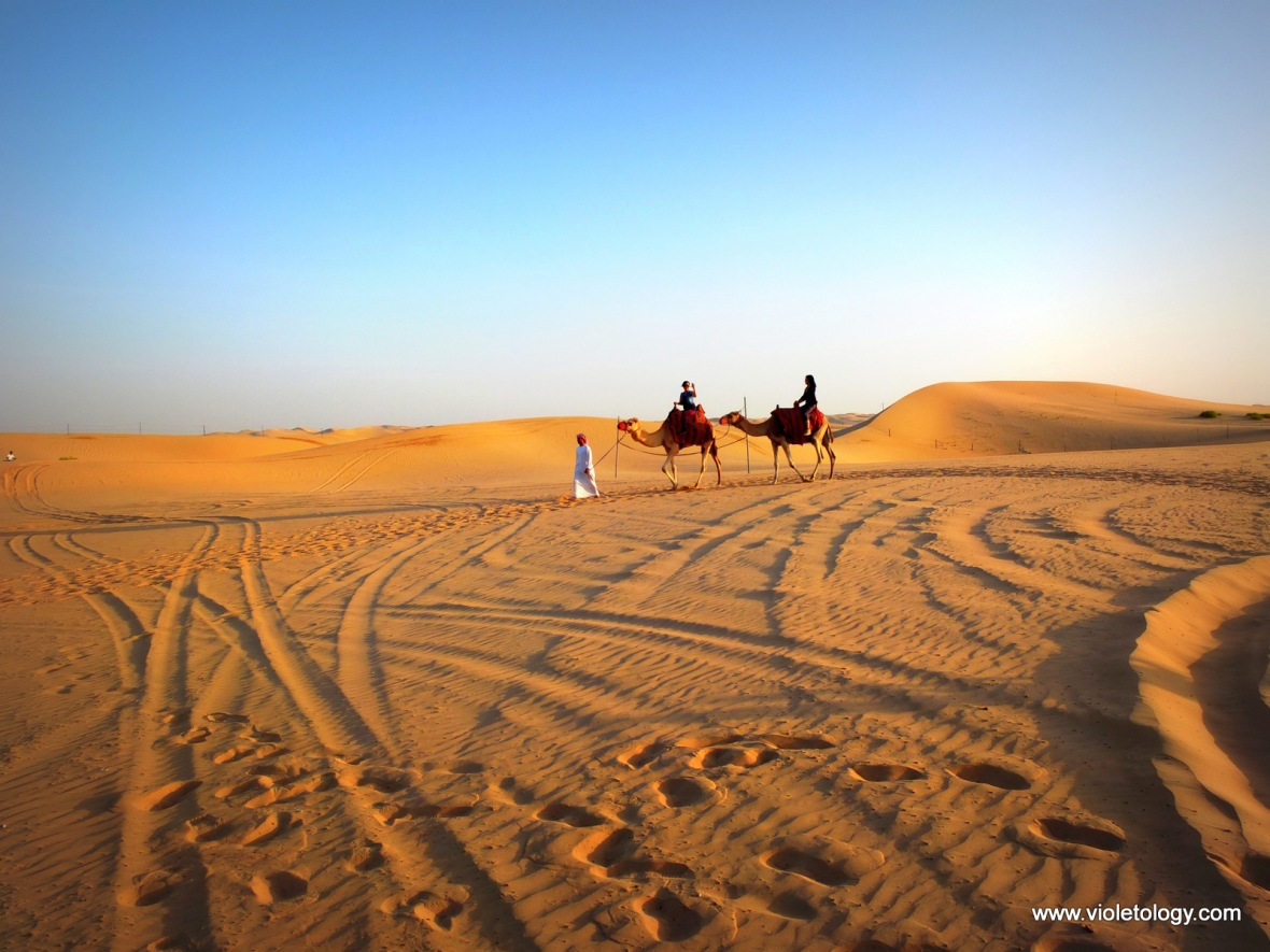 Desert safari (16)