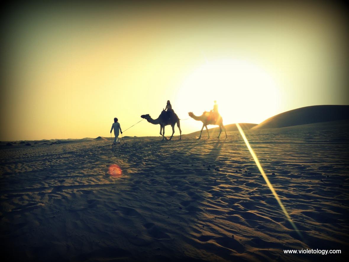 Desert safari (25)