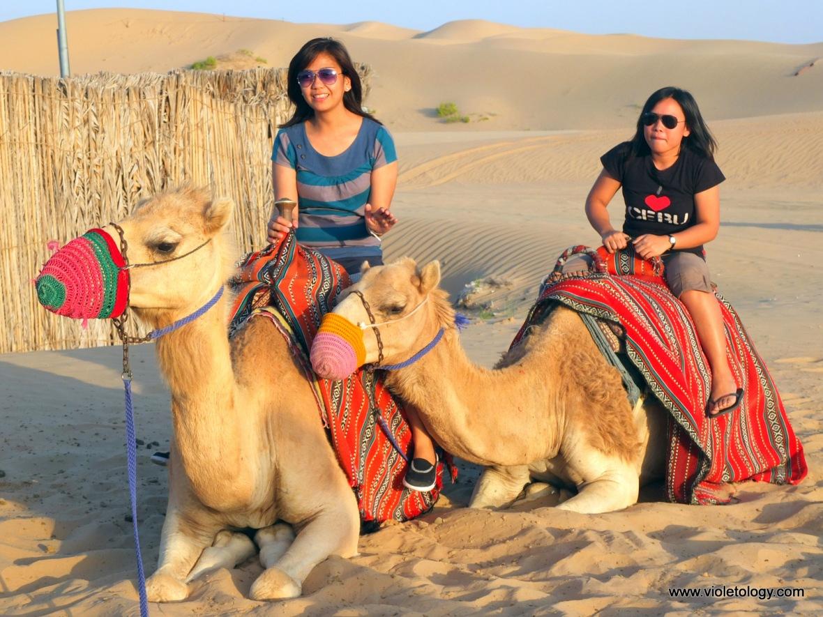 Desert safari (7)