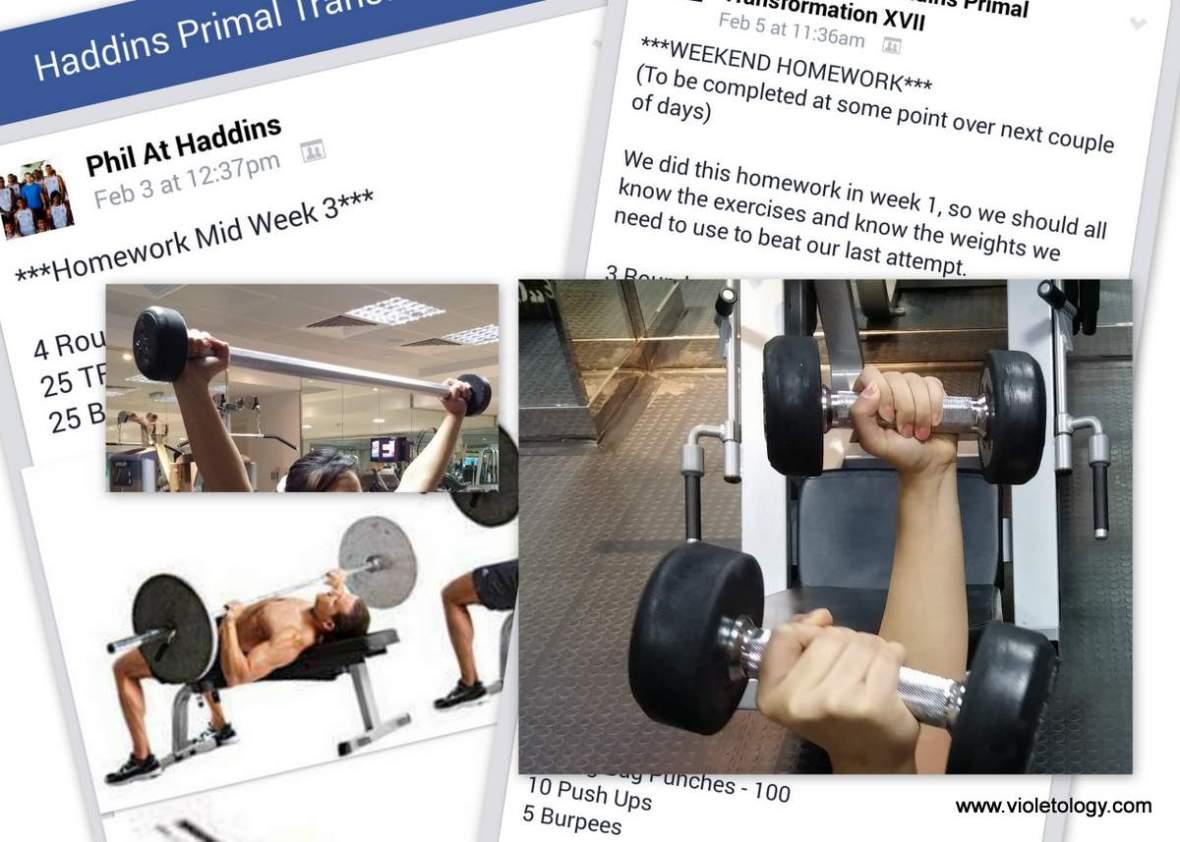 haddins-primal-3 (8)