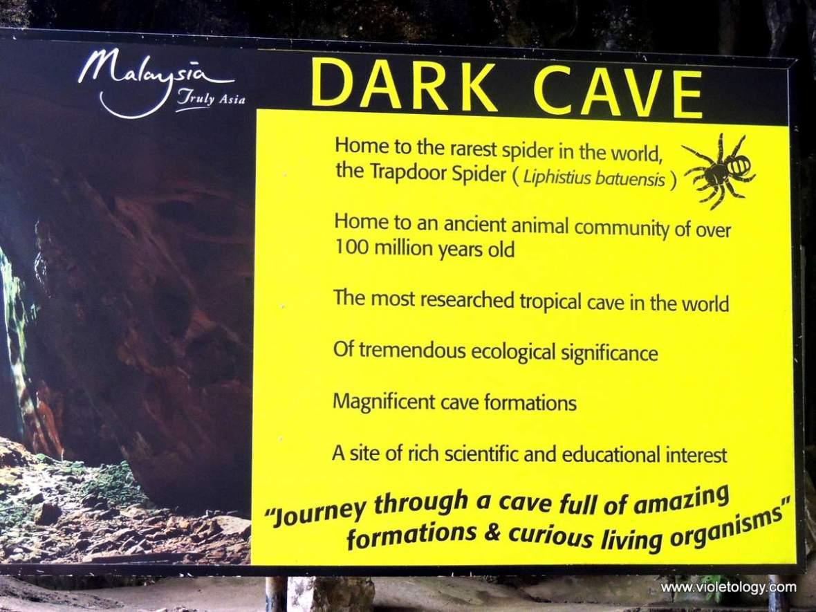 Kuala-Lumpur-Batu-Caves (25)