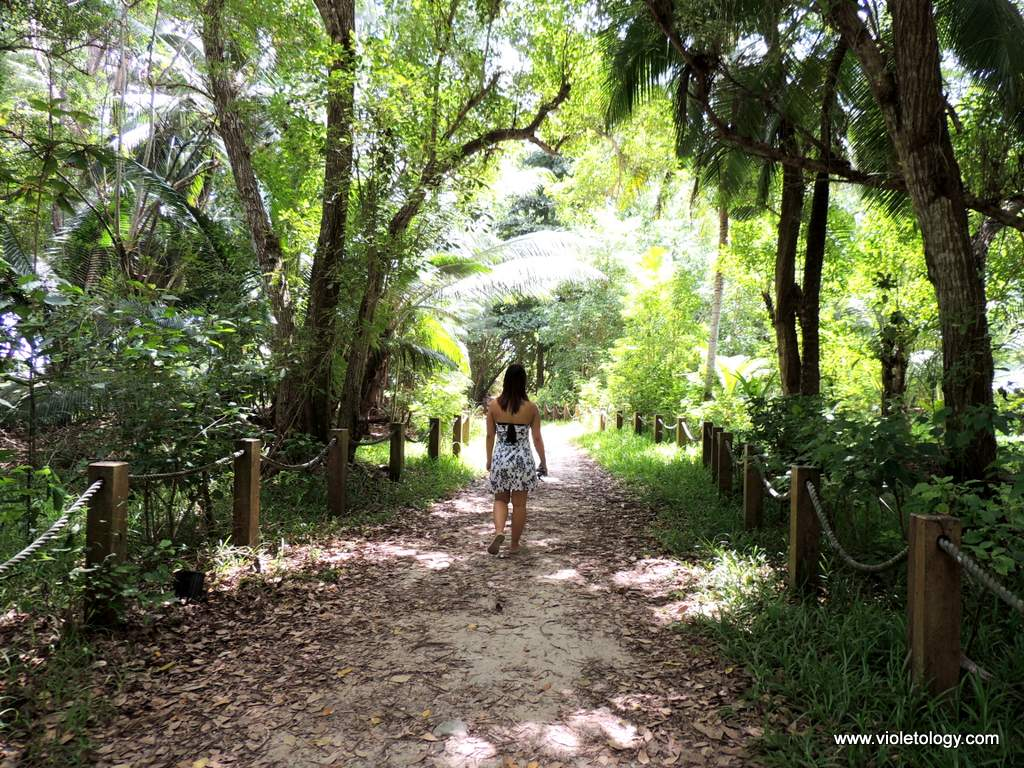Seychelles-anse-intendance (3)