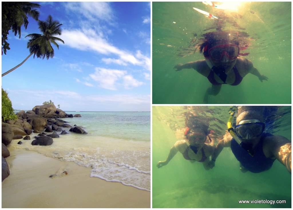 seychelles-fairyland (4)