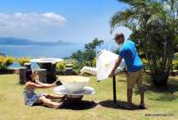 seychelles-tea-factory (8)