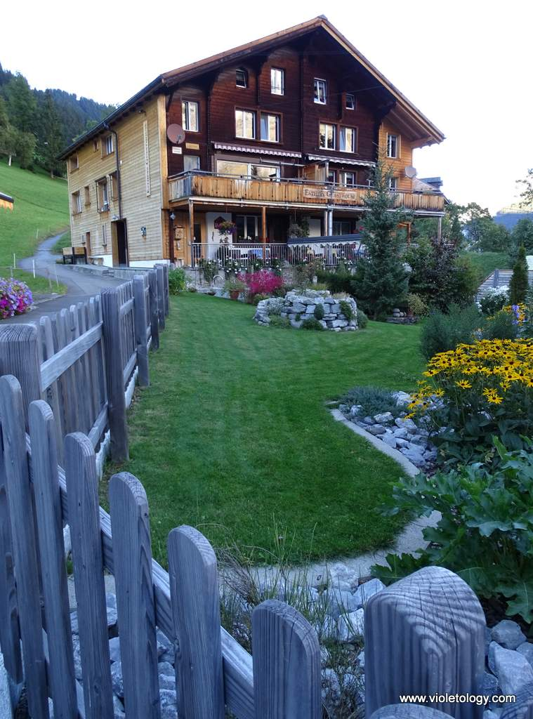 esthers-guesthouse-garden (9)