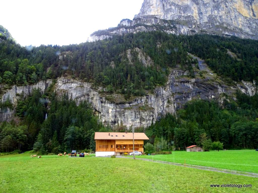 train-to-gimmelwald (8)