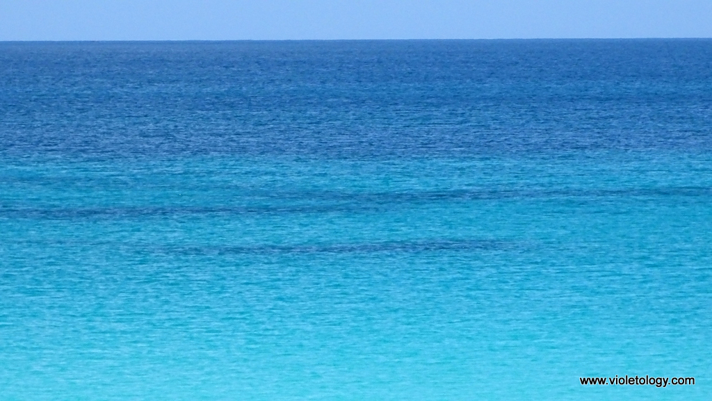 calaguas-island (6)
