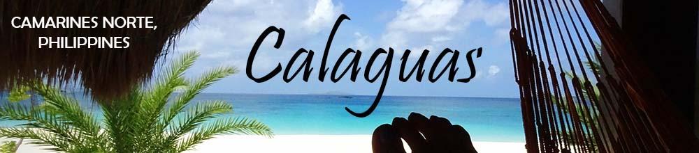 calaguas-bus (14)