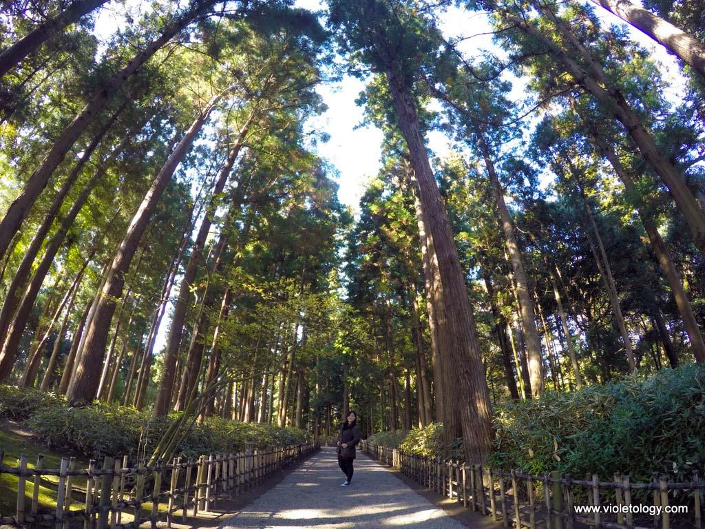 Kairuken-mito-japan