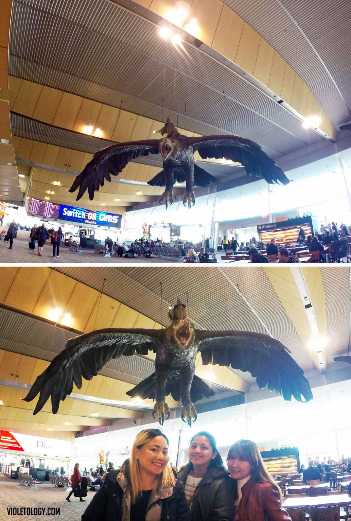 wellington airport LOTR