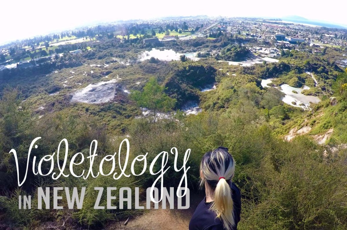 Rotorua The Redwoods Whakarewarewa Forest