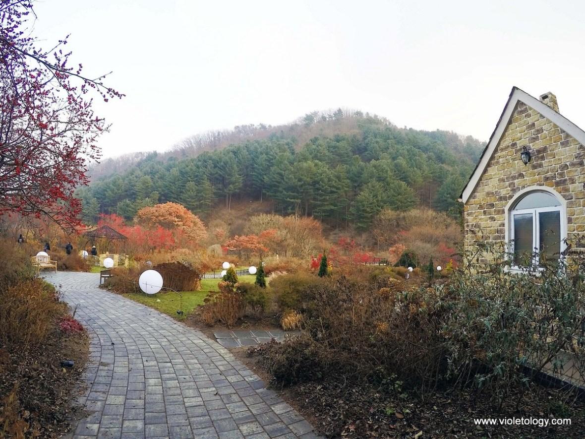 J's Cottage Garden