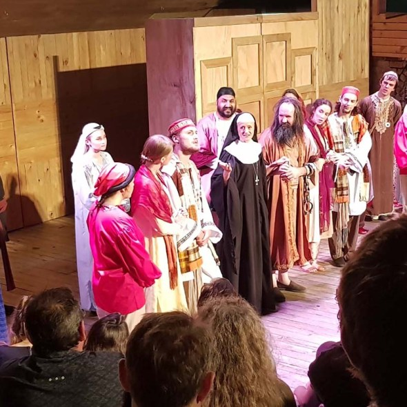 auckland shakespeare in the park comedy of errors