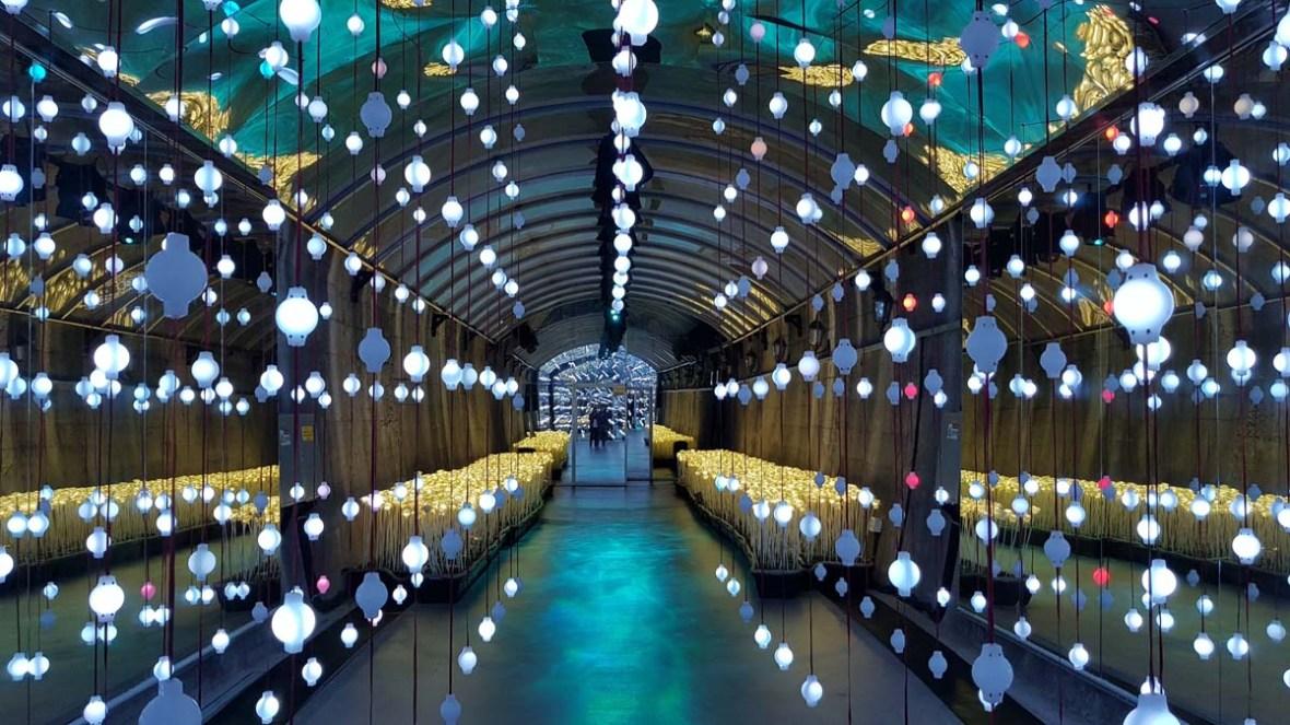 suyanggae light tunnel danyang south korea